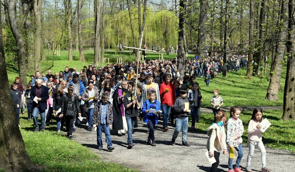 Film do artykułu: Około tysiąca wiernych na drodze krzyżowej w parku dzikowskim [ZDJĘCIA]