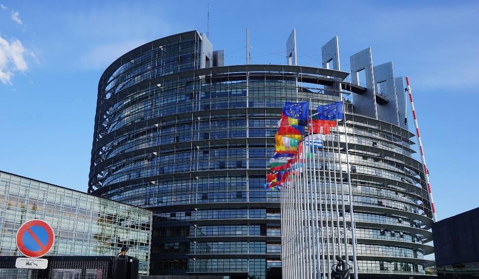 Film do artykułu: Wybory do Europarlamentu 2019. Jak głosować? Kiedy wybory do Parlamentu Europejskiego?