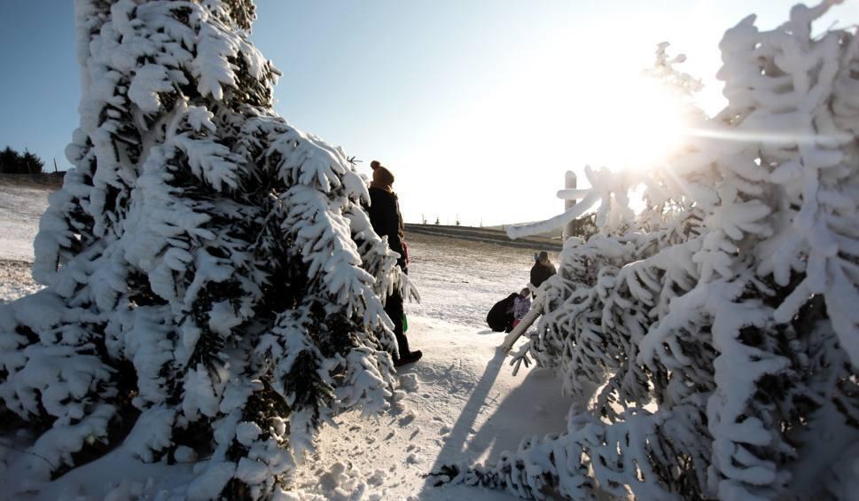 Film do artykułu: Pogoda w Łodzi regionie na niedzielę, 19 lutego