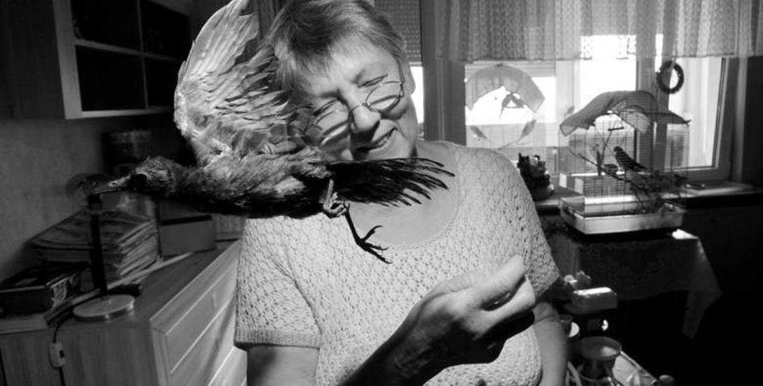 Wspomnienie. Nie żyje pani Irena, która uratowała wiele skrzydlatych istnień
