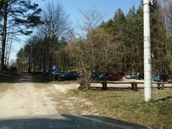 W Lasach Państwowych tłumaczą, że przed zakazem lasy odwiedzało dużo osób.