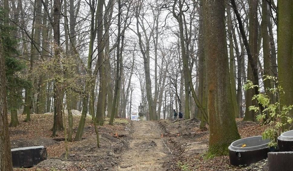 Film do artykułu: Trwają prace renowacyjne w Parku Zdrojowym w Busku-Zdroju. Ile drzew pójdzie pod topór? Wycinka budzi duże kontrowersje (WIDEO, ZDJĘCIA)