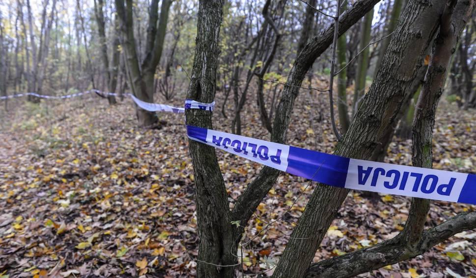 Film do artykułu: WYMIARKI. Zwłoki młodego mężczyzny znaleziono w parku. Były do połowy spalone. Na miejscu policja i prokurator