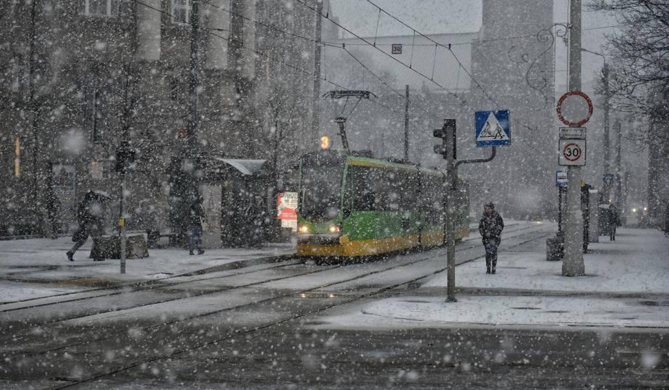 Film do artykułu: Poznań: Zima jeszcze powróci. I to już w ten weekend [POGODA]