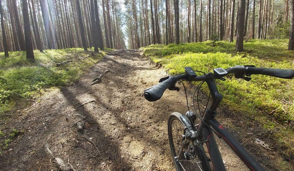 Film do artykułu: Asfaltowa ścieżka rowerowa i oznaczone leśne trasy dla cyklistów, to wszystko znajdziecie w gminie Łubniany