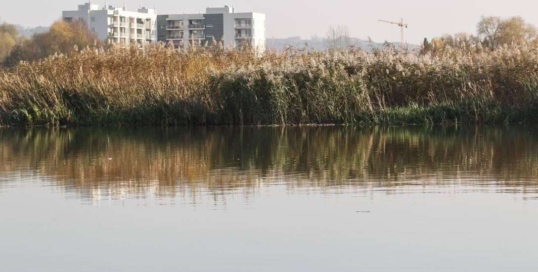 Urzędnicy chcą poprzez oczyszczenie dna z mułu przywrócić rzeszowskiemu zalewowi funkcję rekreacyjną