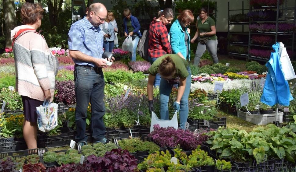 Film do artykułu: 10. Lubuski Kiermasz Ogrodniczy w Kalsku. Tysiące gości przyjechały na zakupy. Zobaczcie, co i za ile można było kupić [ZDJĘCIA, WIDEO]