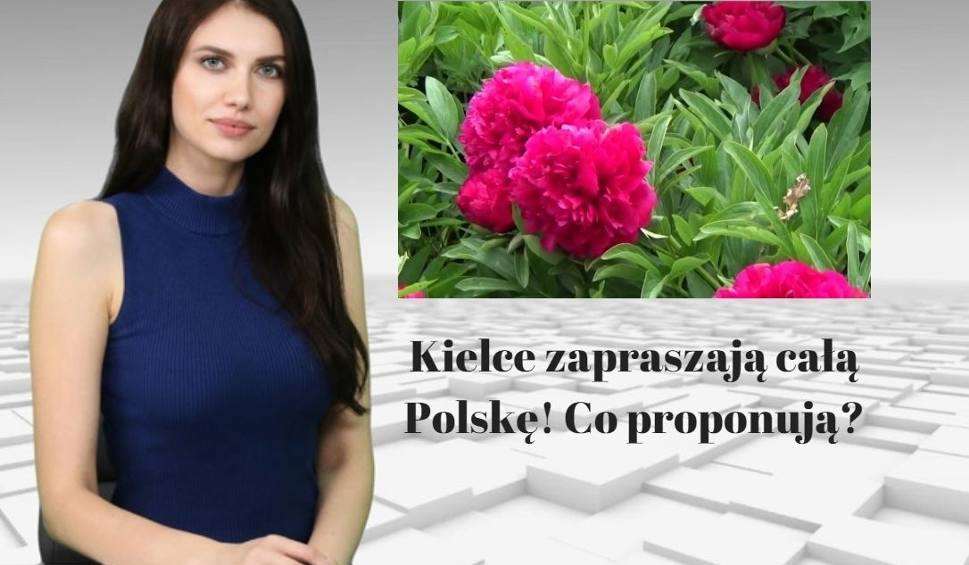 Film do artykułu: Kielce zapraszają całą Polskę! Co proponują? WIADOMOŚCI