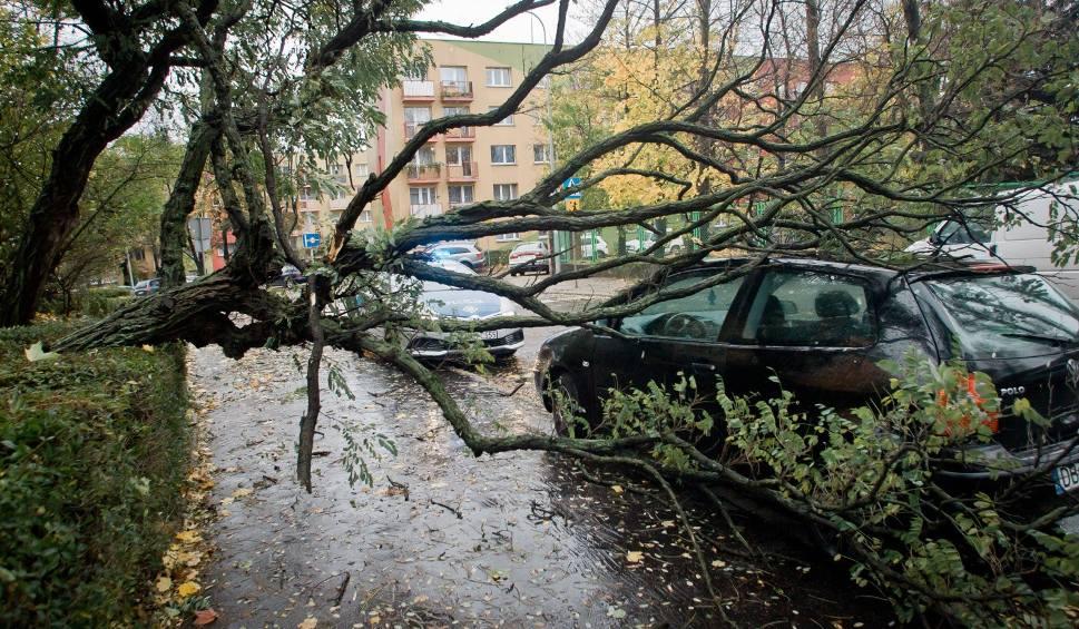 Film do artykułu: Klimat się zmienia. W regionie grożą nam huragany, powodzie i susze!