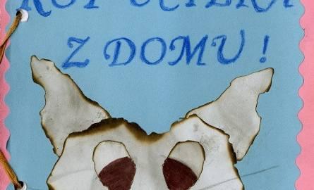 Dziesięcioletnia Kornnella z Gorzowa napisała książkę o przygodach kota