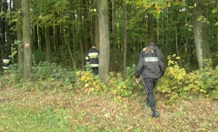 Gmina Grabów nad Pilicą. Odnaleźli 82-letnią kobietę zaginioną w lesie. Poszła na grzyby