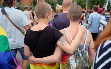 Środowisko LGBT co roku wychodzi na poznańskie ulice w Marszu Równości