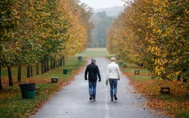 Listopad może nie rozpieszcza aurą, ale niesie mnóstwo możliwości dla różnych wspólnych działań całą rodziną