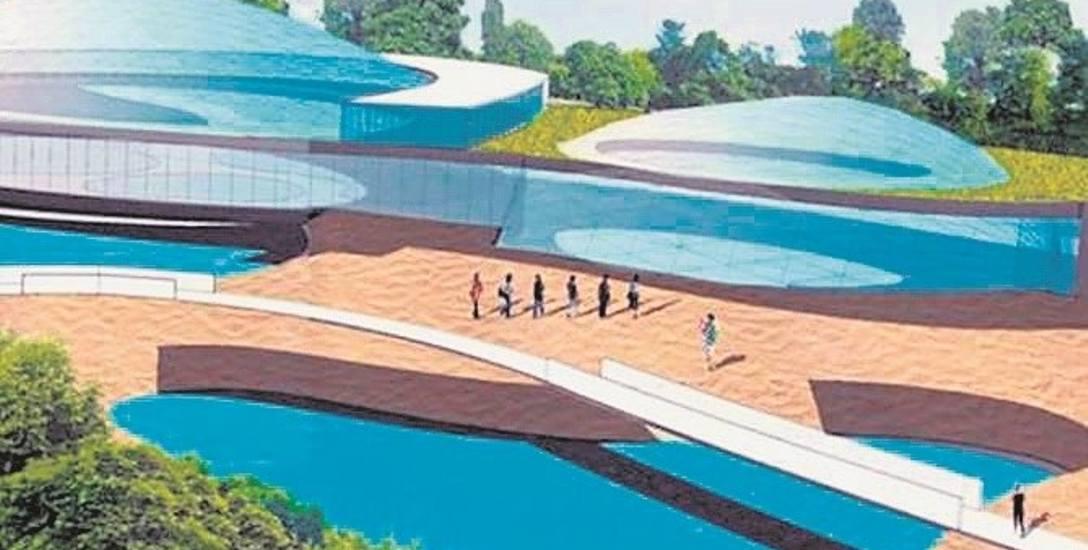 Spółka Barleda Poland w ub. roku zapowiedziała budowę w Choczni  Parku Sportu i Rozrywki. Galeria ma być w pobliżu