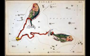 Horoskop miesięczny dla Ryb. Sprawdź, co przygotowały dla Ciebie gwiazdy