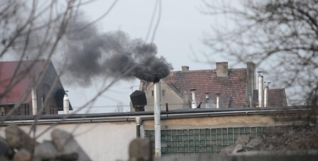 Kiedy widzimy taki siwy dym, możemy poinformować o tym zielonogórską straż miejską