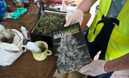 Policjanci zlikwidowali profesjonalnie zorganizowaną plantację konopi. Funkcjonariusze zabezpieczyli narkotyki o czarnorynkowej wartości około 190 tys.