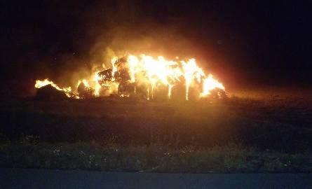 Do pożarów doszło w okresie od 3 do 24 września.