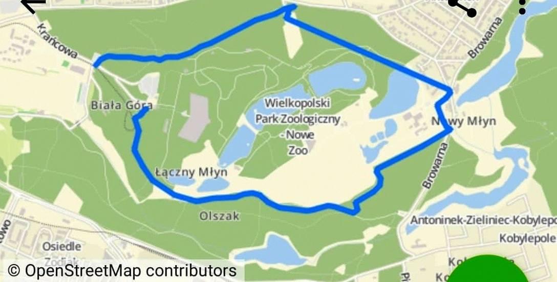 Bieg rozpocznie się o godz. 10, start przy ul. Krańcowej. Trasa liczy 5 km.