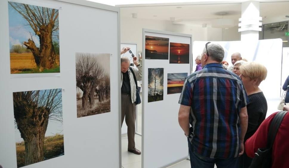 c807452e63 Film do artykułu  Nowa wystawa fotograficzna studentów kozienickiego  Uniwersytetu Trzeciego Wieku