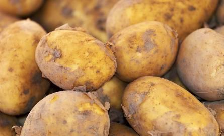 Ziemniaki są droższe o 75%, zboża też w cenie, gorzej z żywcem. Ceny produktów rolnych