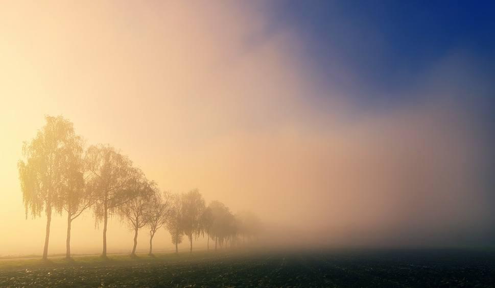 Film do artykułu: Ostrzeżenie IMGW dla województwa lubuskiego. Możemy się spodziewać gęstych mgieł