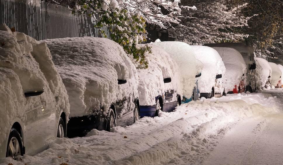 Film do artykułu: Pogoda na zimę 2018/2019. Pierwszy śnieg już za nami, kiedy większe opady? Długoterminowa prognoza pogody na zimę