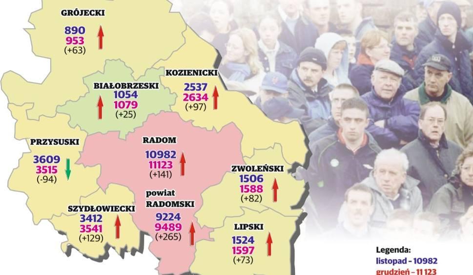 Film do artykułu: Region radomski. W grudniu wzrosła liczba bezrobotnych. Eksperci od rynku pracy uspokajają