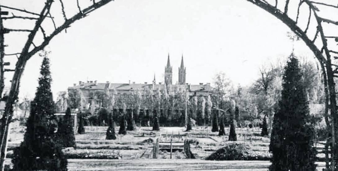 Białostockie rosarium było ozdobą Plant. Lata 40. XX wieku