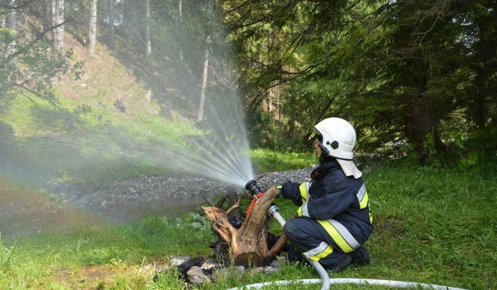 Film do artykułu: Tatry. Strażacy ćwiczyli na wypadek pożaru lasu [ZDJĘCIA]