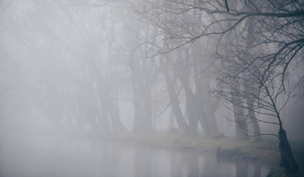 Film do artykułu: W nocy gęsta mgła i bardzo ograniczona widoczność!