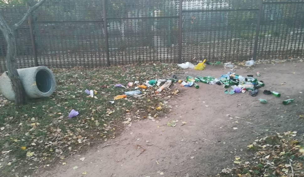 Film do artykułu: Alarm24: Śmieci na wybiegu dla psów przy ul. Budziszyńskiej [ZDJĘCIA]