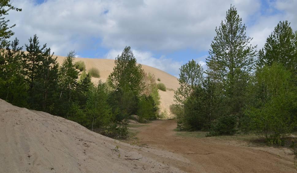 Film do artykułu: Tę górę piachu widać nawet z kosmosu! Wzniesienie pod Białym Borem ma stać się atrakcją turystyczną