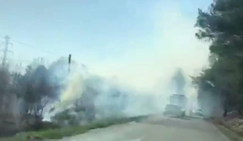 Film do artykułu: Pożar łąk i drzew w Budach Głogowskich w powiecie rzeszowskim [WIDEO INTERNAUTY]