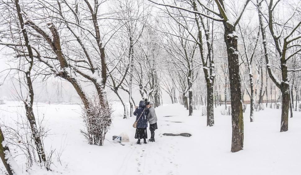 Film do artykułu: Zima 2020. Czy możemy jeszcze liczyć na śnieg? [prognoza długoterminowa]