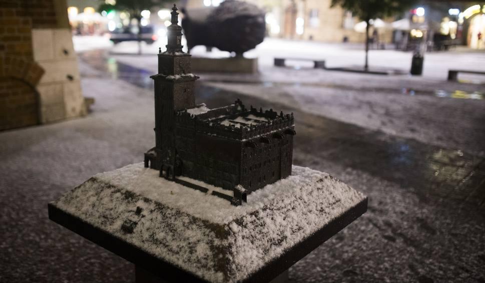 Film do artykułu: Pierwszy śnieg już w Krakowie! Zobacz piękne zdjęcia z Plant [ZDJĘCIA]