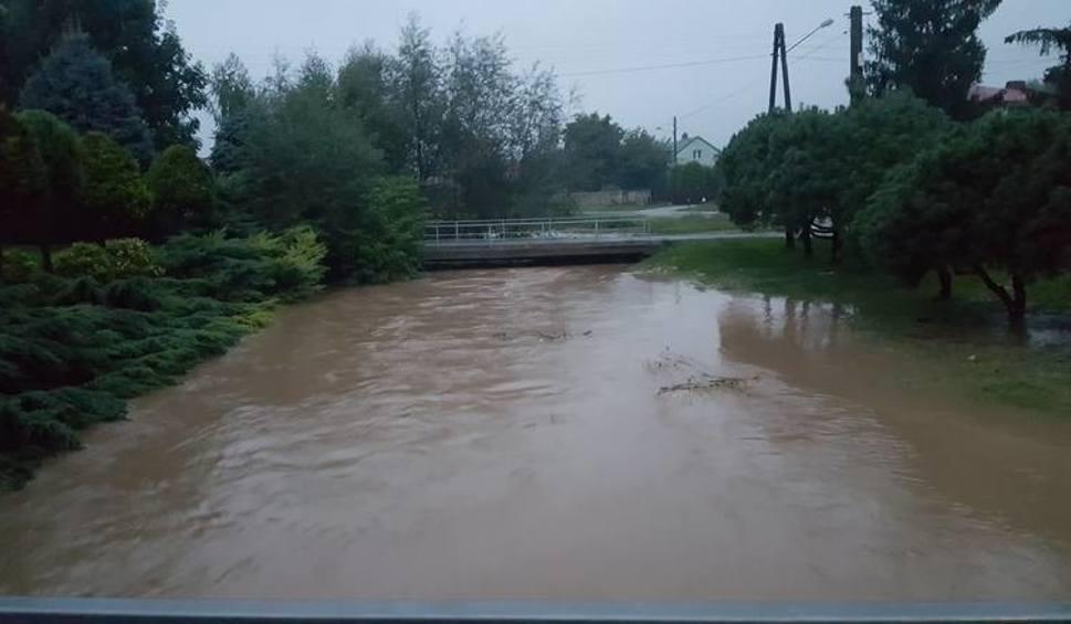 Film do artykułu: Modła w końcu przestanie straszyć mieszkańców Ostrowca i gminy Bodzechów? Komisja Europejska dała zielone światło