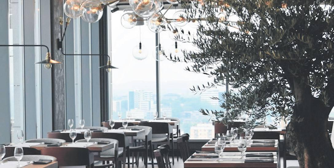 """Ozdobą restauracji """"27th Floor"""" są żywe drzewa w donicach. To na zdjęciu to drzewko oliwne pochodzące z 1897 roku"""