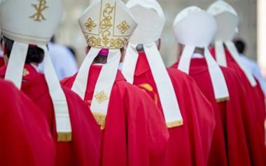Pedofilia w Kościele. Ofiary przestępstw liczą na pomoc. Biskupi rozważają różne opcje