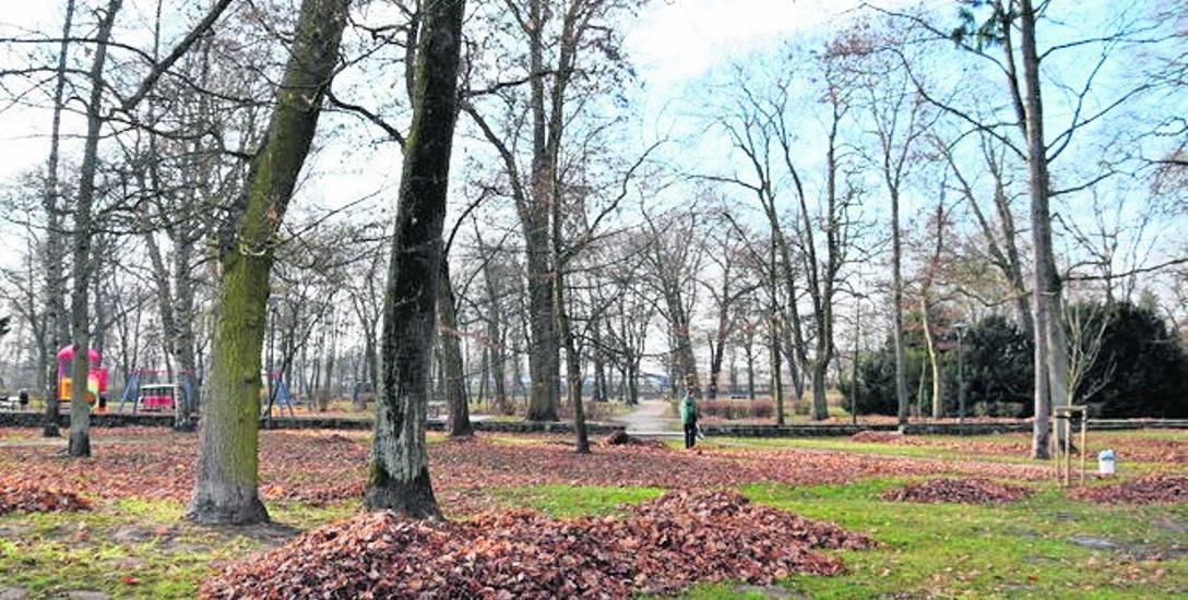 Sprzątanie parków, grabienie liści, mycie autobusów, porządkowanie obejść - to zajęcia dla skazanych na takie prace.