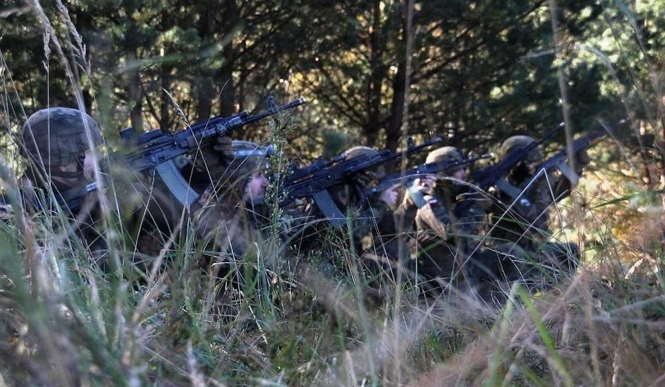 Film do artykułu: Nasi żołnierze polowali na Gronostaja [ZDJĘCIA]
