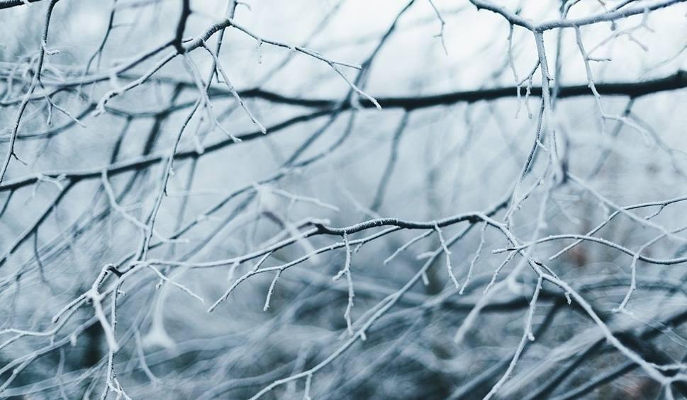 Film do artykułu: Długoterminowa prognoza pogody na grudzień. Czekają nas białe święta?