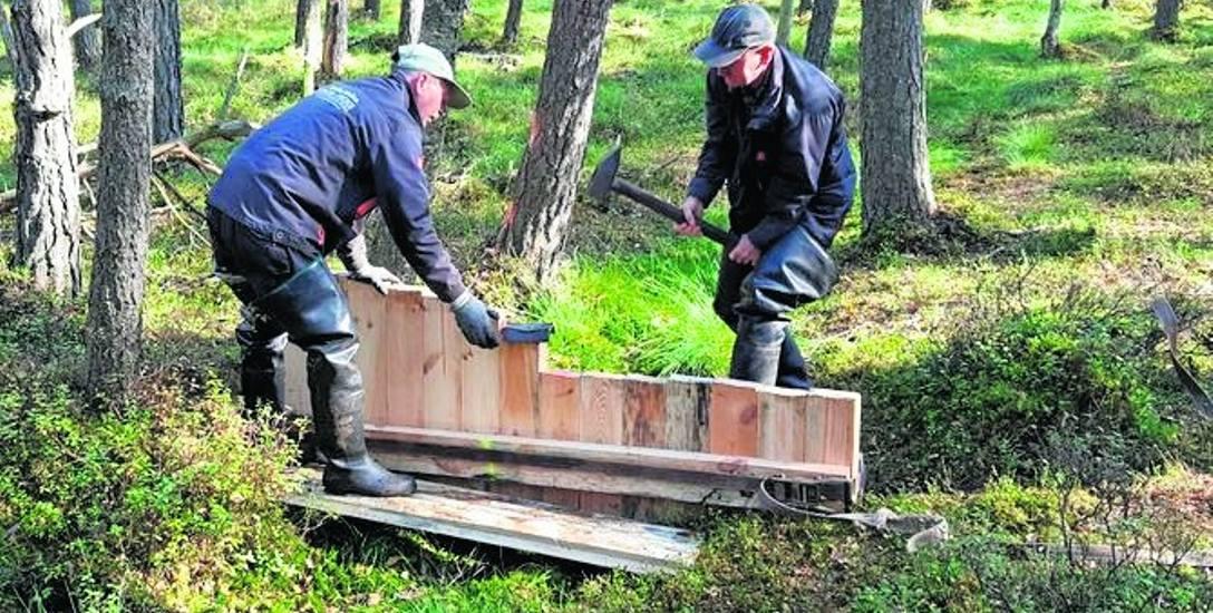 Prace przy montażu zastawki spiętrzającej wodę na jednym z torfowisk koło Szczecinka