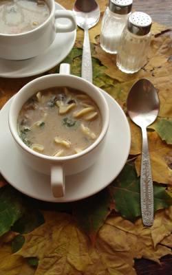 Aromatyczna jesienna zupa z suszonych grzybów.