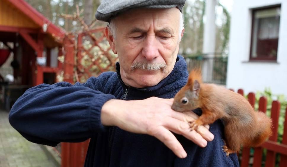 Film do artykułu: Wiewiórka ze Szczecina podbija świat. Poznajcie Pitka - jest przeuroczy! [wideo, zdjęcia]