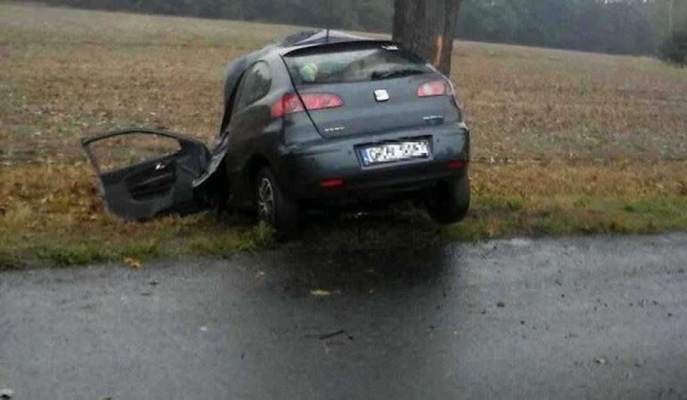 Film do artykułu: Seat wpada w poślizg. Jak doszło do śmiertelnego wypadku w Krępnej [FILM]