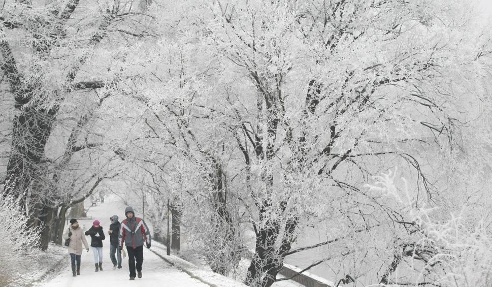 Film do artykułu: Pogoda w Łodzi i regionie na czwartek, 15 lutego. Sprawdź prognozę pogody dla województwa łódzkiego i całej Polski [WIDEO]