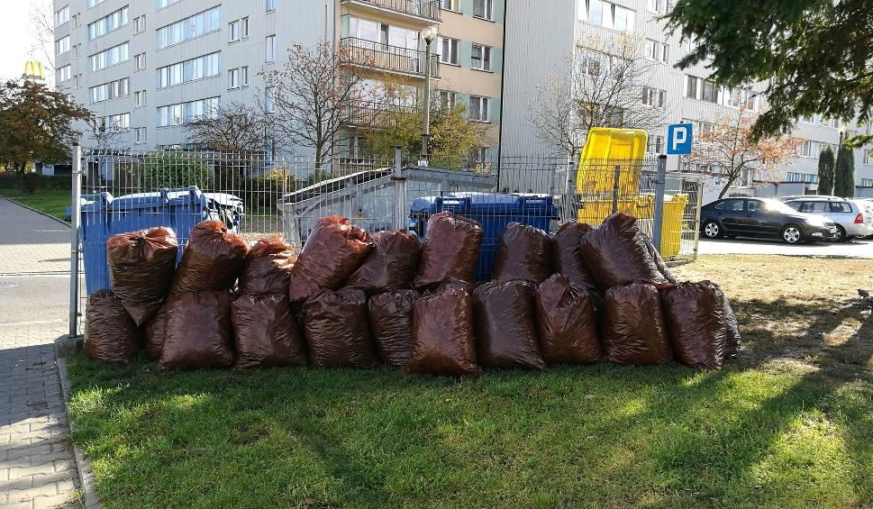 Film do artykułu: Chrzanów. Odpady zielone nadal będą odbierane z posesji mieszkańców. Nie rozwiązano problemu odoru
