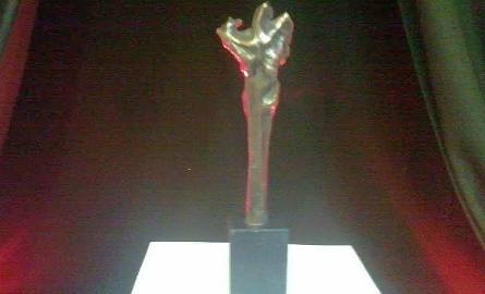 Nagroda Kulturalna w Radomiu. Dla kogo? Dowiemy się w sobotę!