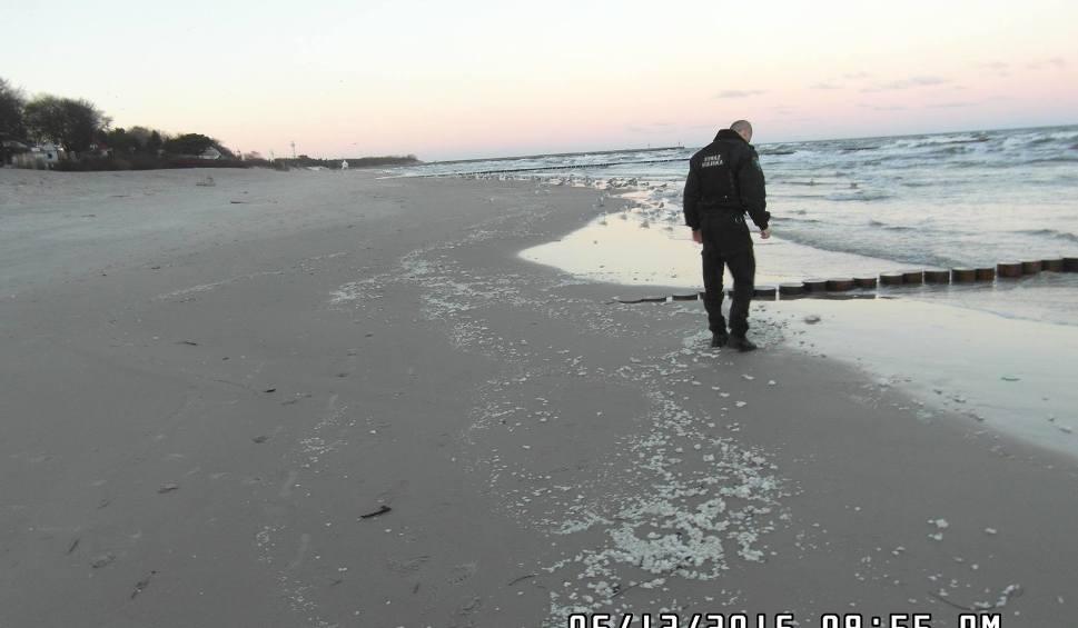 Film do artykułu: Plaża w Ustce zanieczyszczona parafiną